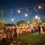 Cadde Hare - Kır Düğünü