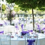 Düğün Çiftliği