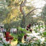 Şehri Sima Kır Düğünü Yenimahalle Düğün Fiyatları