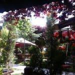 Cennet Bahçesi ankara düğün fiyatları