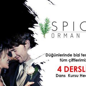 spicy orman evi