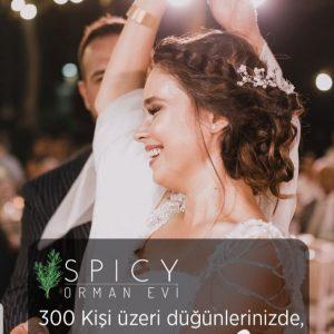 Spicy Orman Evi Eyüp