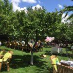heybeli-bahçe (3)